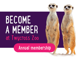 Become a TZ Member