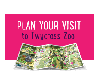 Download our NEW Zoo App