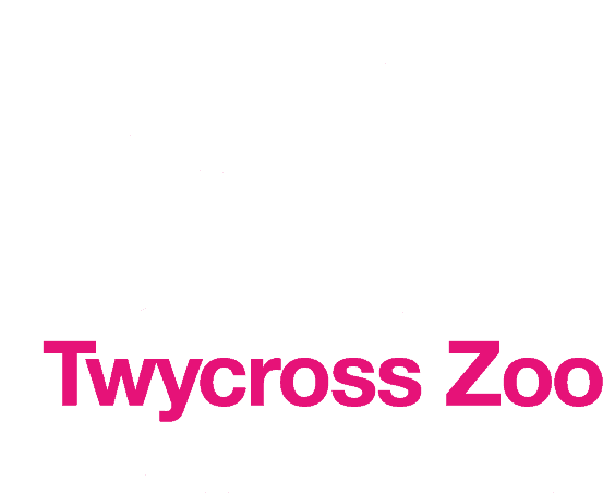 Twycross Zoo - Follow Your Heart