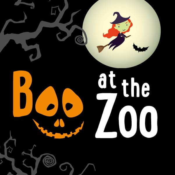 Boo at the zoo 2018 webthumb
