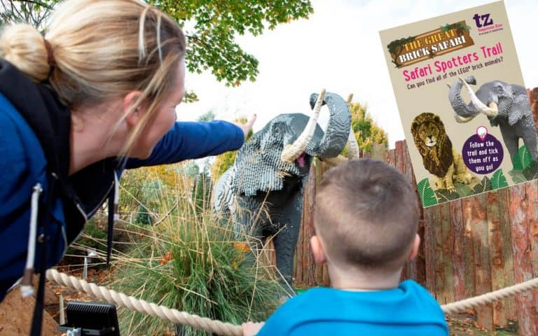 LEGO fun at Twycross Zoo this November