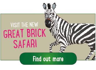 Great Brick Safari