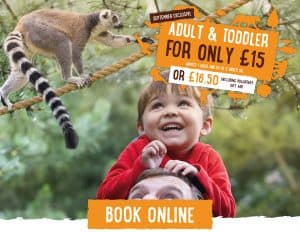 Tickets & Pricing | Twycross Zoo